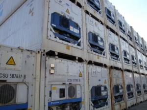 LOTE Containers reefers 11